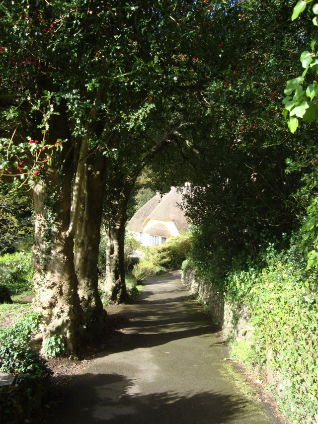 What's at the end of your path?  Selworthy, Quantocks, Somerset (c) Sherri Matthews