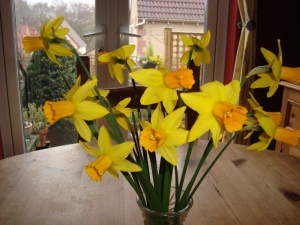Tete-A-Tetes Picked From My Mum's Garden(c) copyright Sherri Matthews 2013
