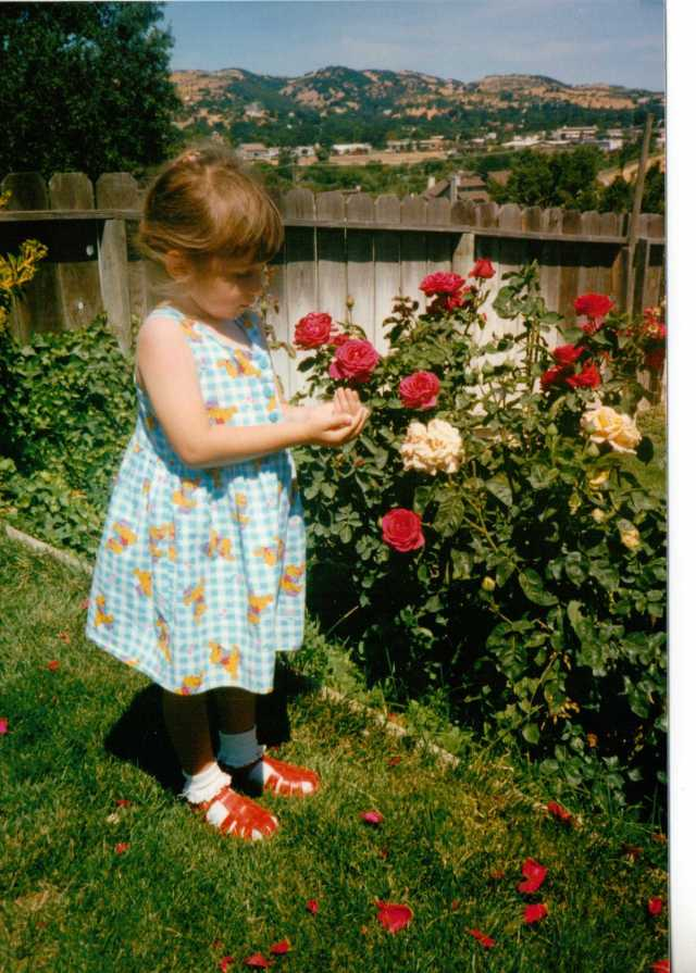 My Little Girl Catching Ladybirds Amongst the Roses  (c) copyright Sherri Matthews 2013