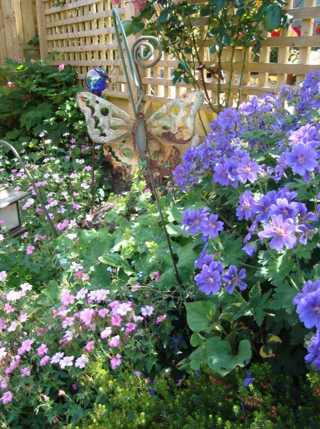 My Garden (c) Sherri Matthews Copyright 2013