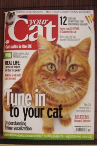 Your Cat Magazine, BPG Media Ltd. November 2013 Edition