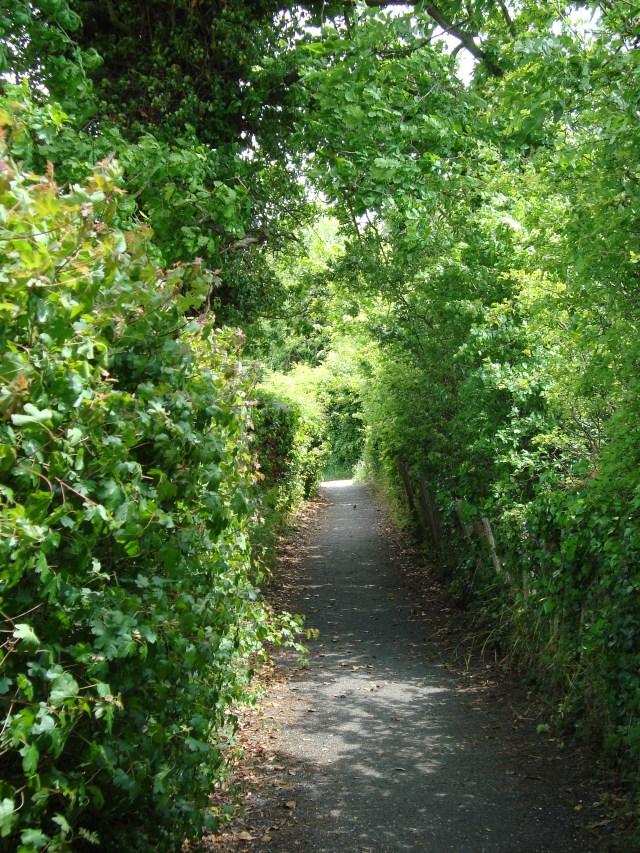Walk to Ranworth Church,Norfolk Broads (c) copyright Sherri Matthews 2013