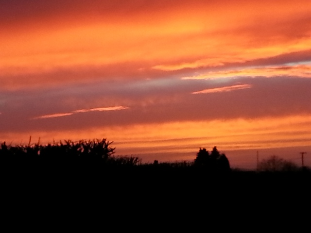 Darkening December Sunset in Somerset (c) Sherri Matthews 2013
