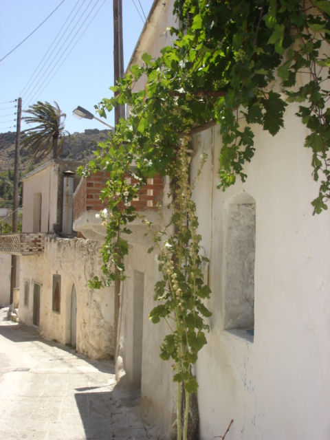 Arch window overlooking the main street through Pefki Village, Crete (c) Sherri Matthews 2008