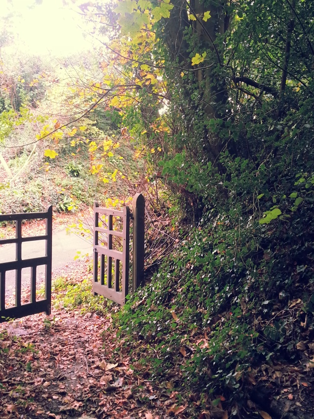 I took this in November before the storms.  It is in a village in Somerset a short walk from where we live.  Behind me is the church.  The gate is usually closed but on this day it was open.  Will you walk through it with me? (c) Sherri Matthews 2014