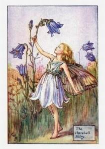 Harebell-Flower-Fairy