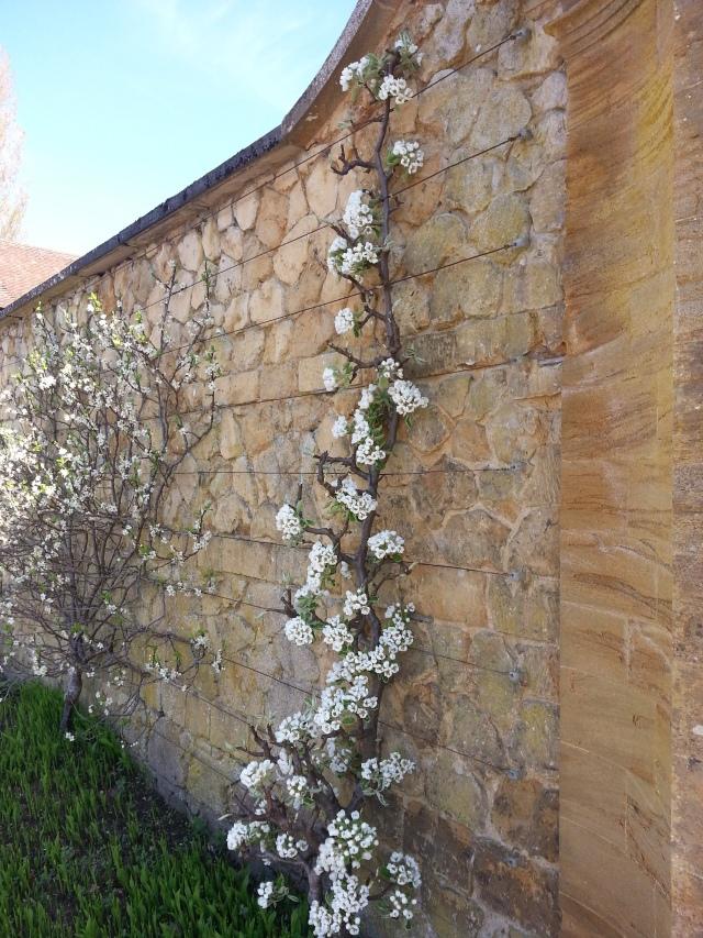 Mintern Magna Easter 2014 (2)