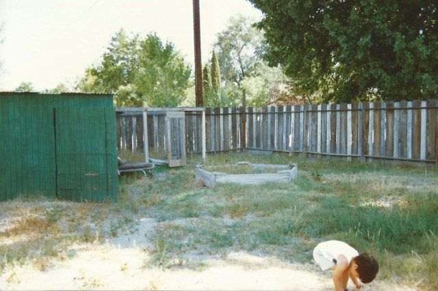 The back as it looked when we first moved in.  Notice the shed and the abandoned chicken run next to it.  Youngest son exlporing. (c) Sherri Matthews 2014