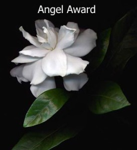 doncharisma-org-award-angel_edited-1