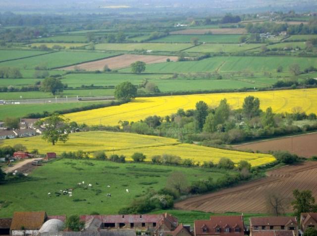 View of Somerset fields Spring 2014 (c) Sherri Matthews 2014