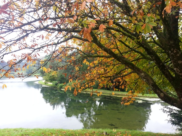 Each season brings with it new challenges... Autumn Leaves at Stourhead (c) Sherri Matthews 2014