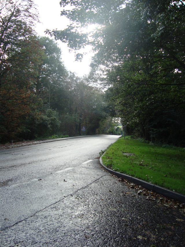 The curve in the road - Suffolk October 2011 (c) Sherri Matthews