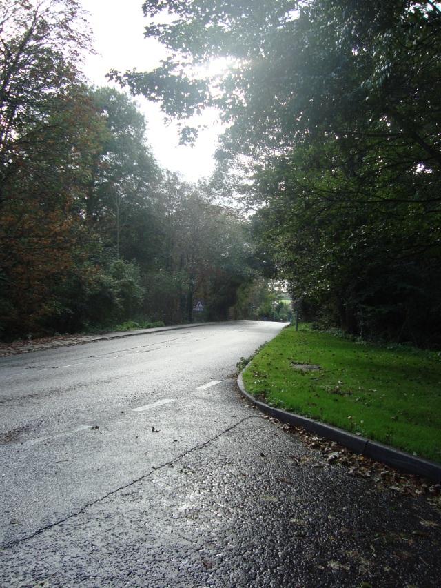 The curve in the road - Suffolk October 2011 (c) Sherri Matthews