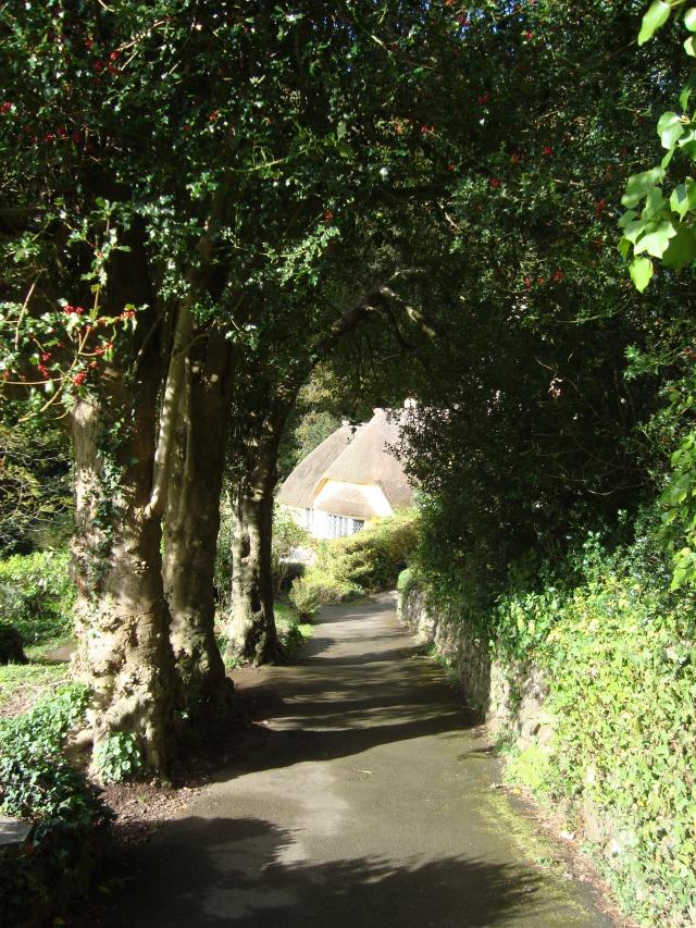 Where will you dreams take you? Selworthy, Somerset, England, October 2011 (c) Sherri Matthews