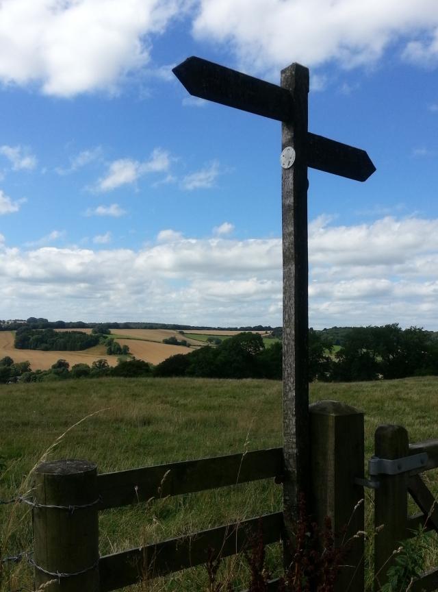 Overlooking Mintern Magna, Dorchester (c) Sherri Matthews 2014