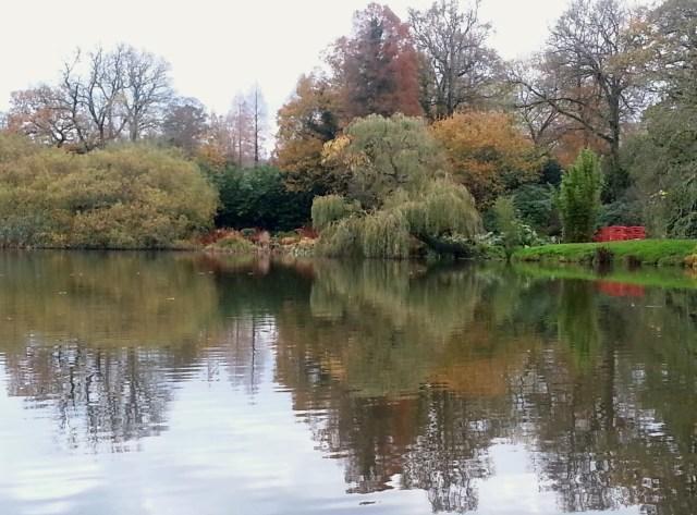 Forde Abbey Gardens - November 2014 (c) Sherri Matthews