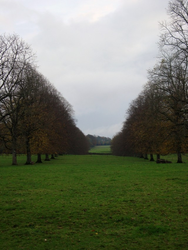 Forde Abbey Nov 2014 (17)