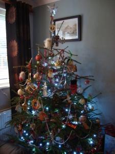 Christmas 2012 (4)