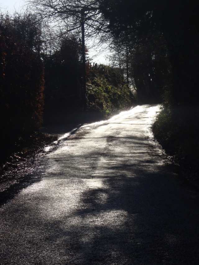 A Path in Somerset (c) Sherri Matthews 2014