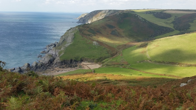 Near the top of a coastal walk overlooking Soar Mill Cove, Devon (c) Sherri Matthews 2015