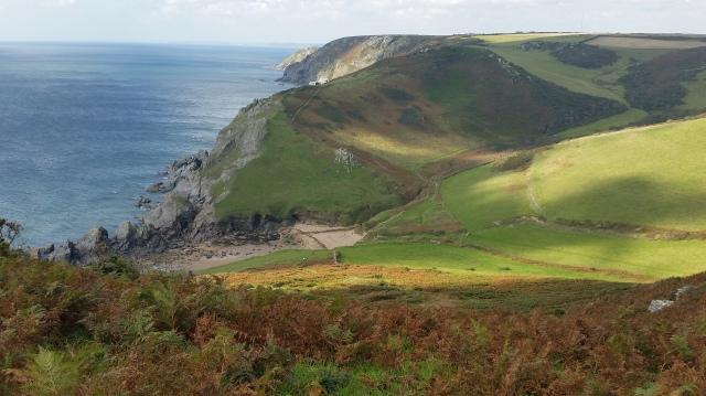 Near the top of a coastal walk overlooking Soar Mill Cove, Devon (c) Sherri Matthews 2015