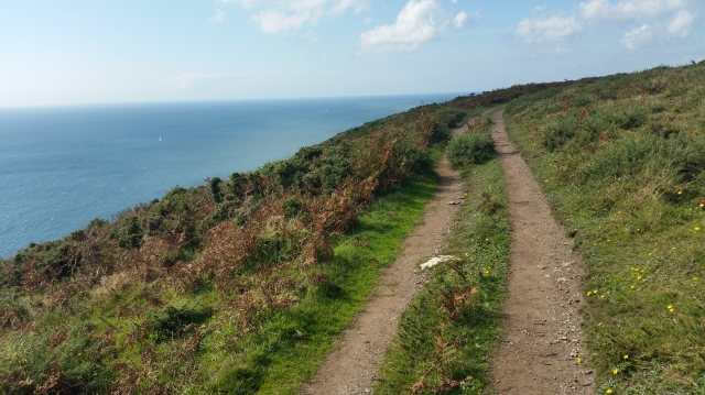 Coastal path Devon Coastline, England (c) Sherri Matthews 2015