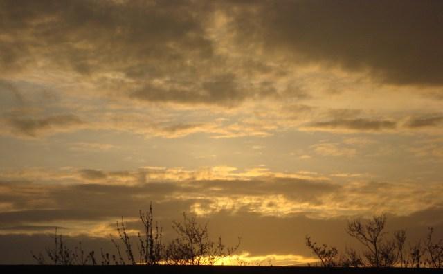 Somerset Sunrise (c) Sherri Matthews